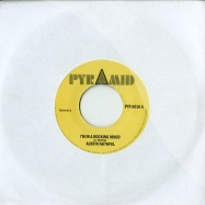 I M IN A ROCKING MOOD / STREAM OF LIFE (7 INCH)
