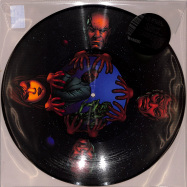 Front View : The Exaltics and Paris The Black Fu - WE EXIST (CHAPTER ONE) (PIC DISC + MP3) - Solar One Music / SOM050