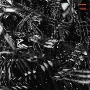 Front View : Hydergine - ENTHEOLOGY (W/ DEEPBASS REMIX)(VINYL ONLY) - Phorma / Phorma012