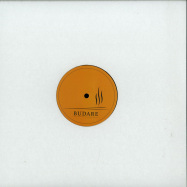 Front View : Various Artists - THE MERCOSUR SAMPLER - Budare / BUDARE009