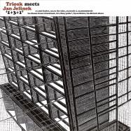 Front View : Triosk Meets Jan Jelinek - 1 3 1 (LP) - Faitiche / fait-back05LP