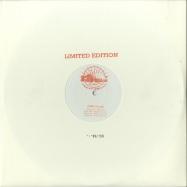 Front View : Adam Collins - DAY 2 DAY (RANDOM FACTOR, MIEKA DU FRANX RMX) - Giant Records / GR010