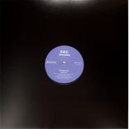 Front View : E.B.E. - GROUNDED - Dark Grooves Records / DG-14
