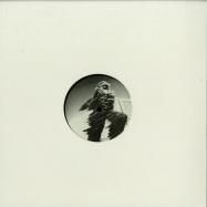 Front View : Intergalactic Gary & Pasiphae - MADE OF GLASS EP - Bio Rhythm / RHYTHM020