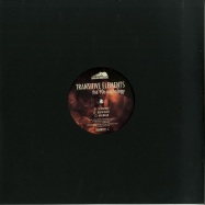 Front View : Transitive Elements - THE 90S ANTHOLOGY (VINYL 2) - Down Da Mountains / DDMNT02-FX2