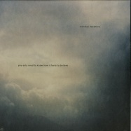 Front View : Nicholas Desamory - YOU ONLY NEED TO KNOW HOW IT FEELS TO BELIEVE (LP) - Staubgold / 126861