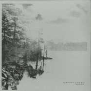 Front View : Dwaallicht - WELKIN EP - Analogical Force / AF002