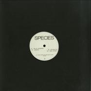Front View : Re-UP - SPECIES 001 - Species / SPCS001
