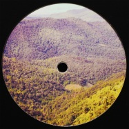 Front View : Birdsmakingmachine - AGAINST THE ODDS (VINYL ONLY) - Magic Mountain Club / MMC004