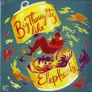 Front View : Mees Salome - BIG THOUGHTS LIKE ELEPHANTS (2X12) - Filth on Acid / FOA032