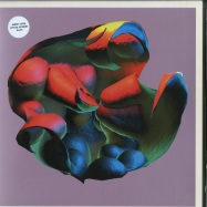 Front View : Robert Lippok - APPLIED AUTONOMY (LP) - Raster / r-m181-2