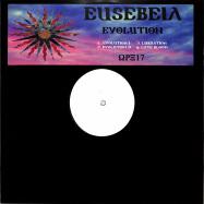 Front View : Eusebeia - EVOLUTION - Warehouse Rave / WRX17