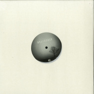 Front View : Grad_u - SURFACE VARIATIONS II (180G) - GREYSCALE / GREYSCALE02b