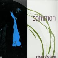 RESURRECTION (LP)