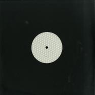 Front View : Various Artists - NONNATIVE 09 - Semantica / SemNNN09