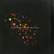 Front View : Snow Patrol - A HUNDRED MILLION SUNS (2LP) - Polydor / 6795428