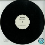 Front View : Module One - VOYAGE EP (VINYL ONLY) - LumieresLaNuit / LLNOFF007