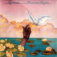 PROMISED HEIGHTS LP