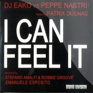 I CAN FEEL IT (MAXI CD)