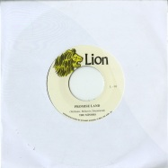 PROMISE LAND (7 INCH)
