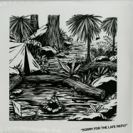 Front View : Young Marco - SORRY FOR THE LATE REPLY (2X12 INCH LP) - Safe-Trip / st 001