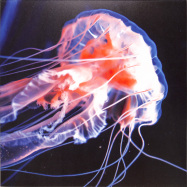 Front View : nthng - SHINE - Transatlantic Records / TAR006