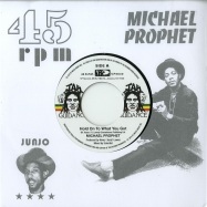 Front View : Michael Prophes / Roots Radics - HOLD ON TO WHAT YOU GOT / CRY OF THE WEREWOLF (7 INCH) - VP Music / VP9630