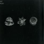 Front View : 747 - PALEO (2X12) - Aquaregia Records / AQR010
