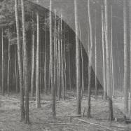 Front View : Schaeufler & Zovsky - ROGGENTIN - Acker Records / Acker012