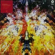 THE BRIEF WONDROUS (LP)