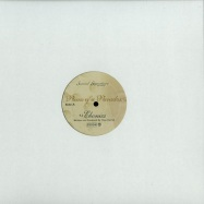 Front View : Theo Parrish - PIECES OF A PARADOX - Sound Signature / SS004