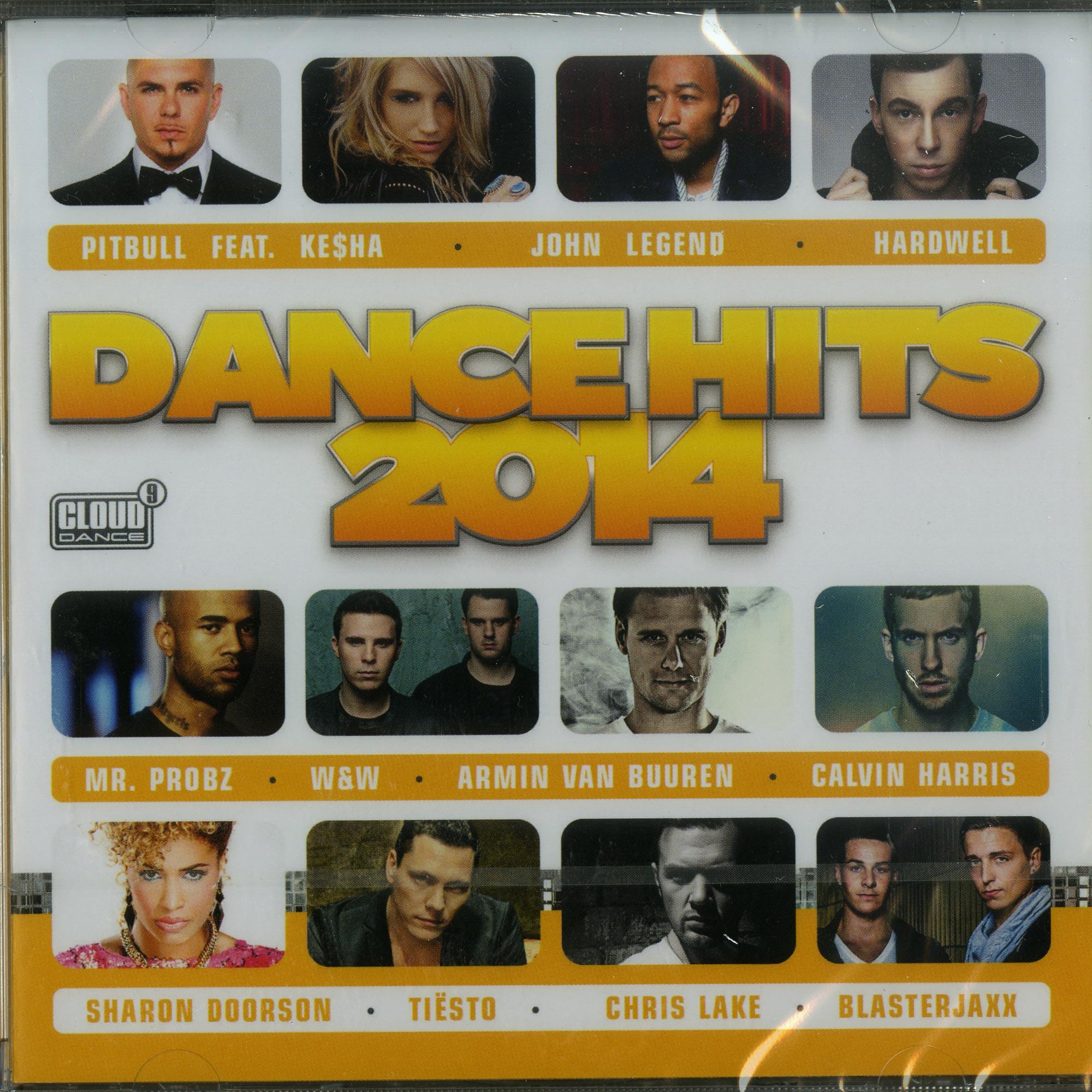 Various Artists - DANCE HITS 2014