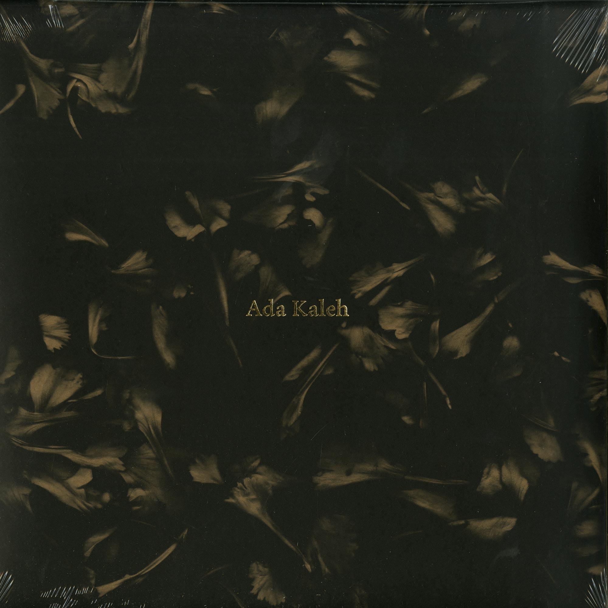 Ada Kaleh - DENE DESCRIS LP PART 1