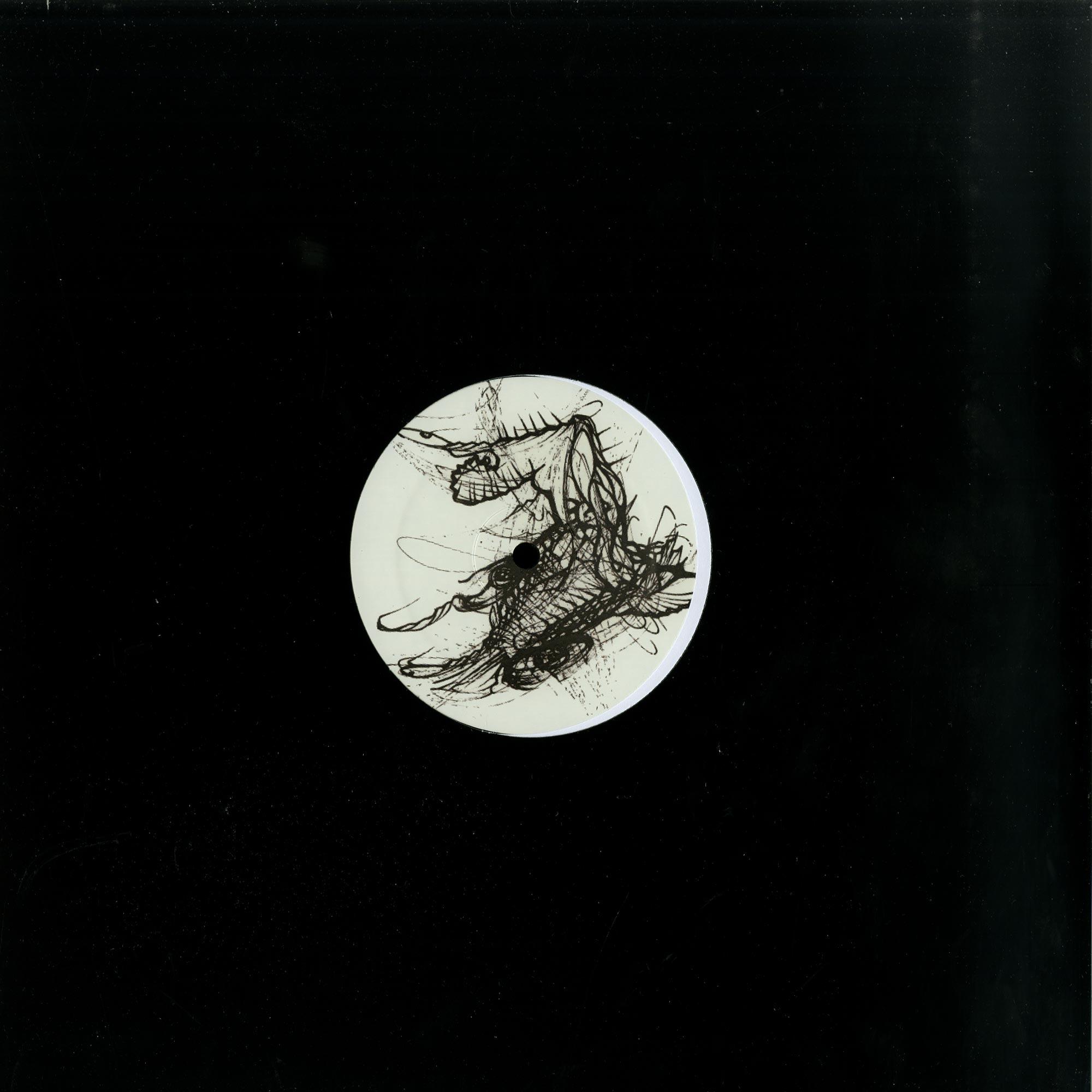 Dark Quadrant - THE COSMIC PERSPECTIVE