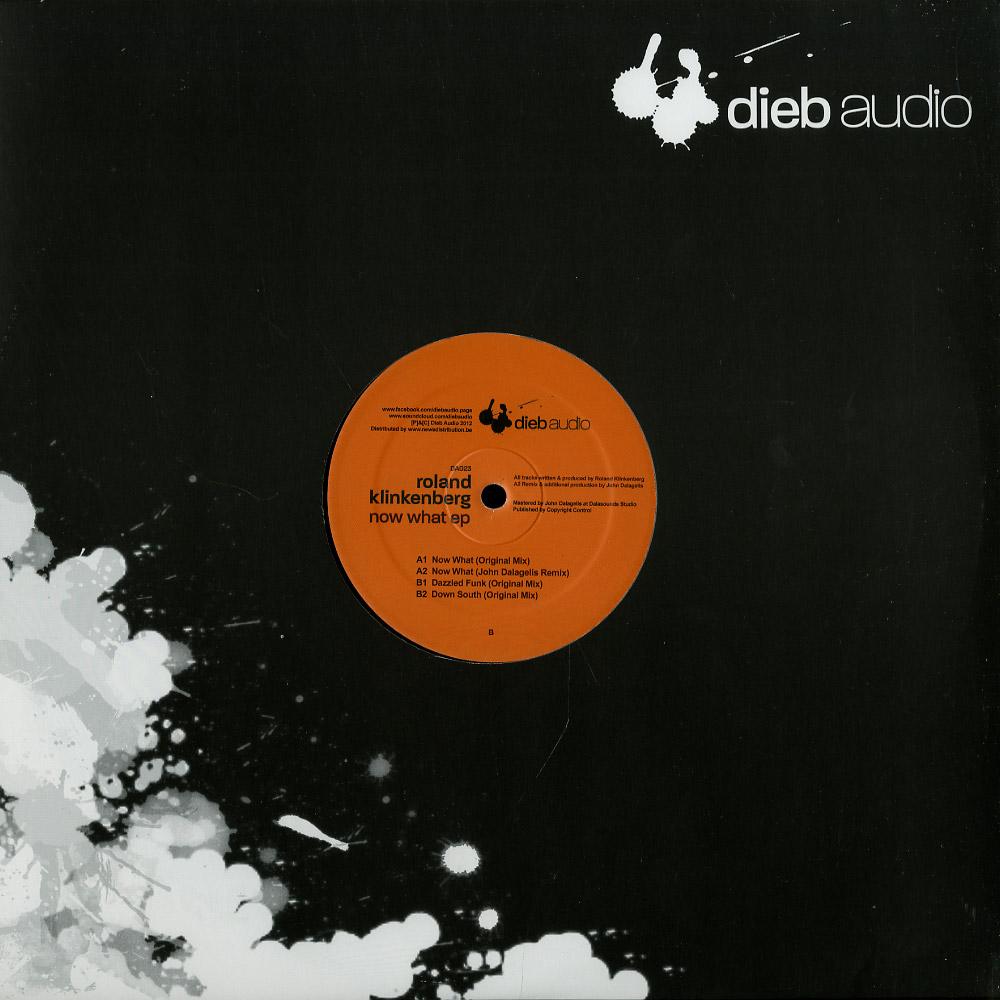 Roland Klinkenberg - NOW WHAT EP