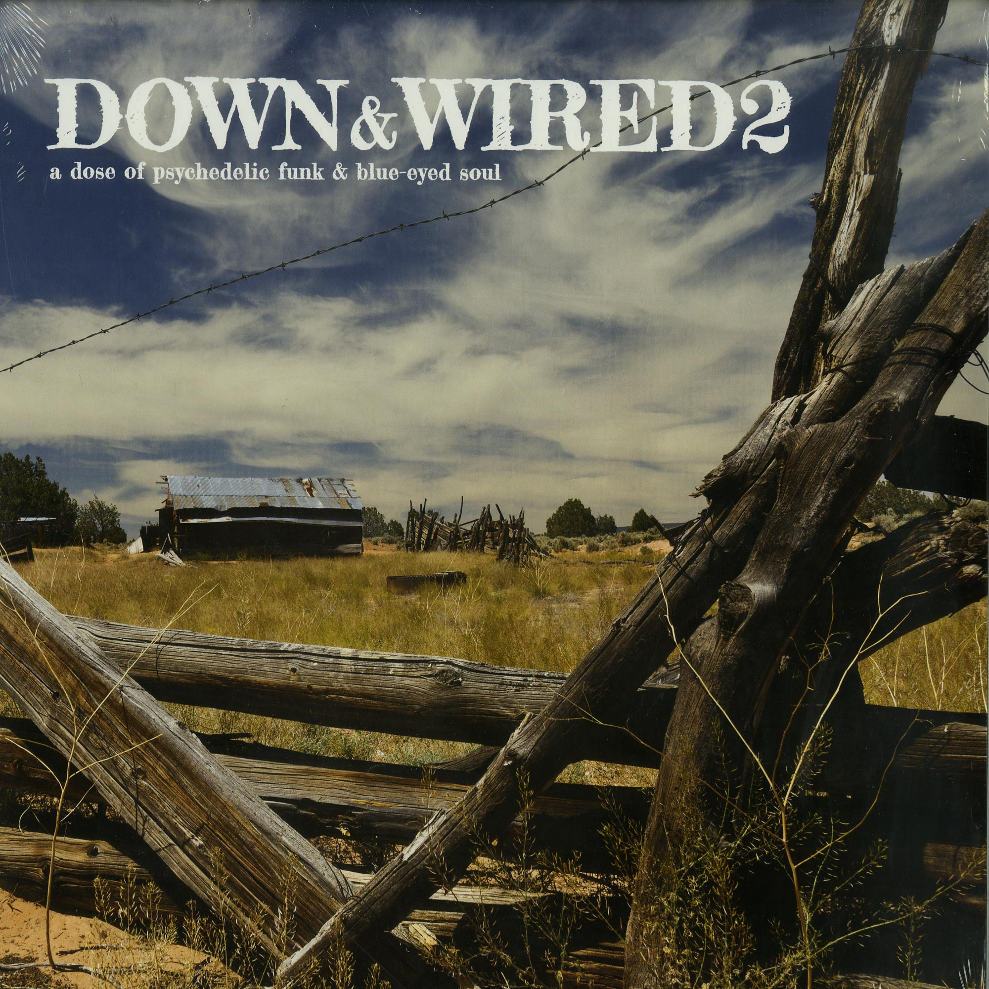 Various Artists - DOWN & WIRED 2