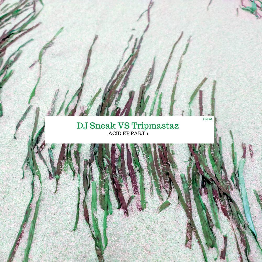 DJ Sneak VS Tripmastaz - ACID EP PART 1
