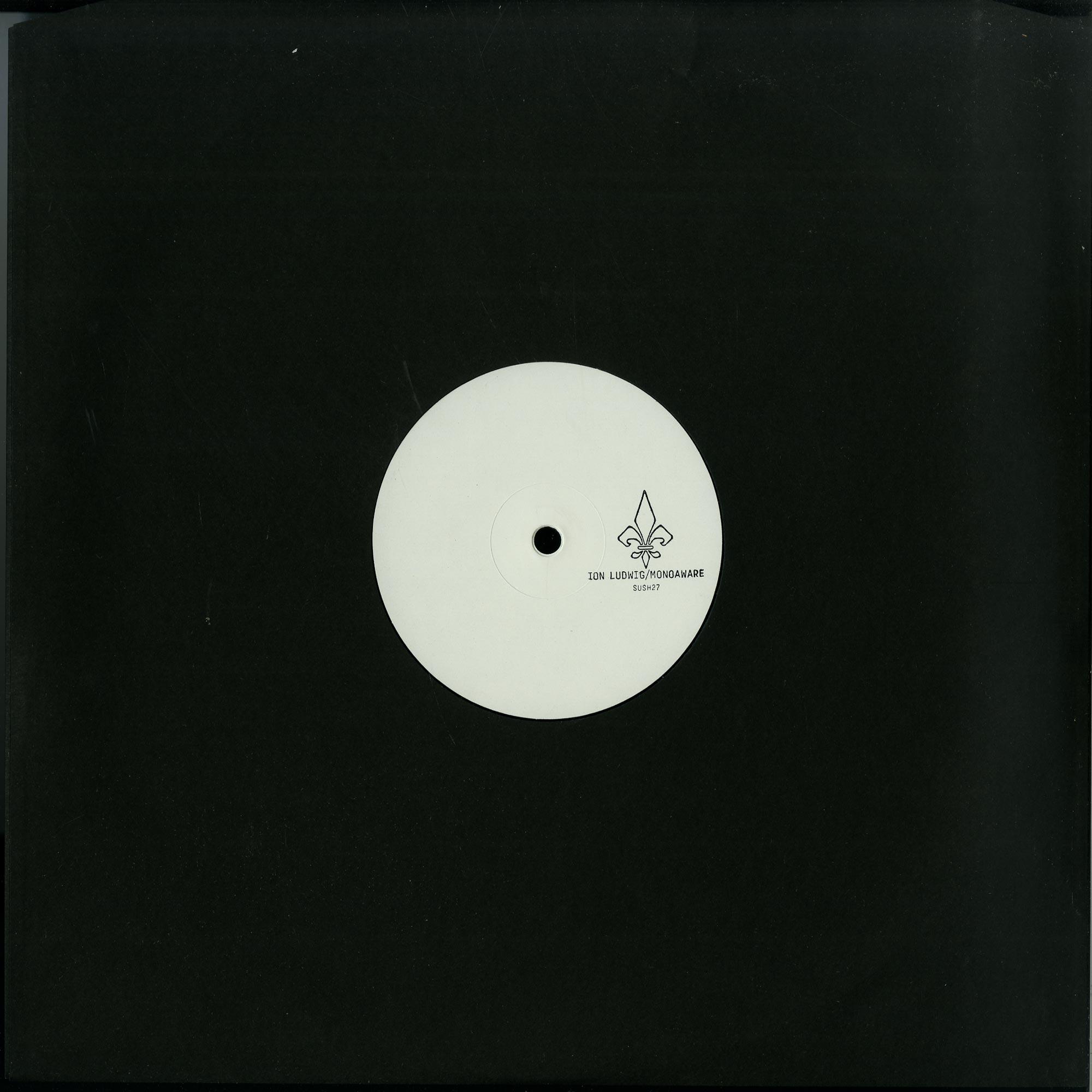 Ion Ludwig / Monoaware - SPLIT