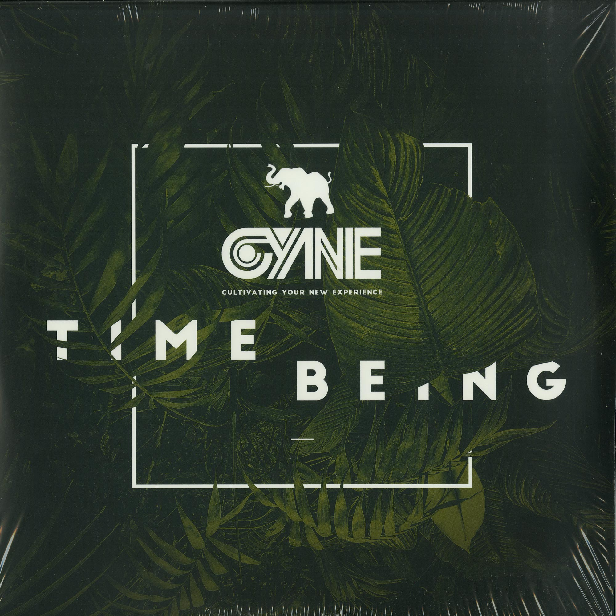 CYNE - TIME BEING DELUXE EDITION