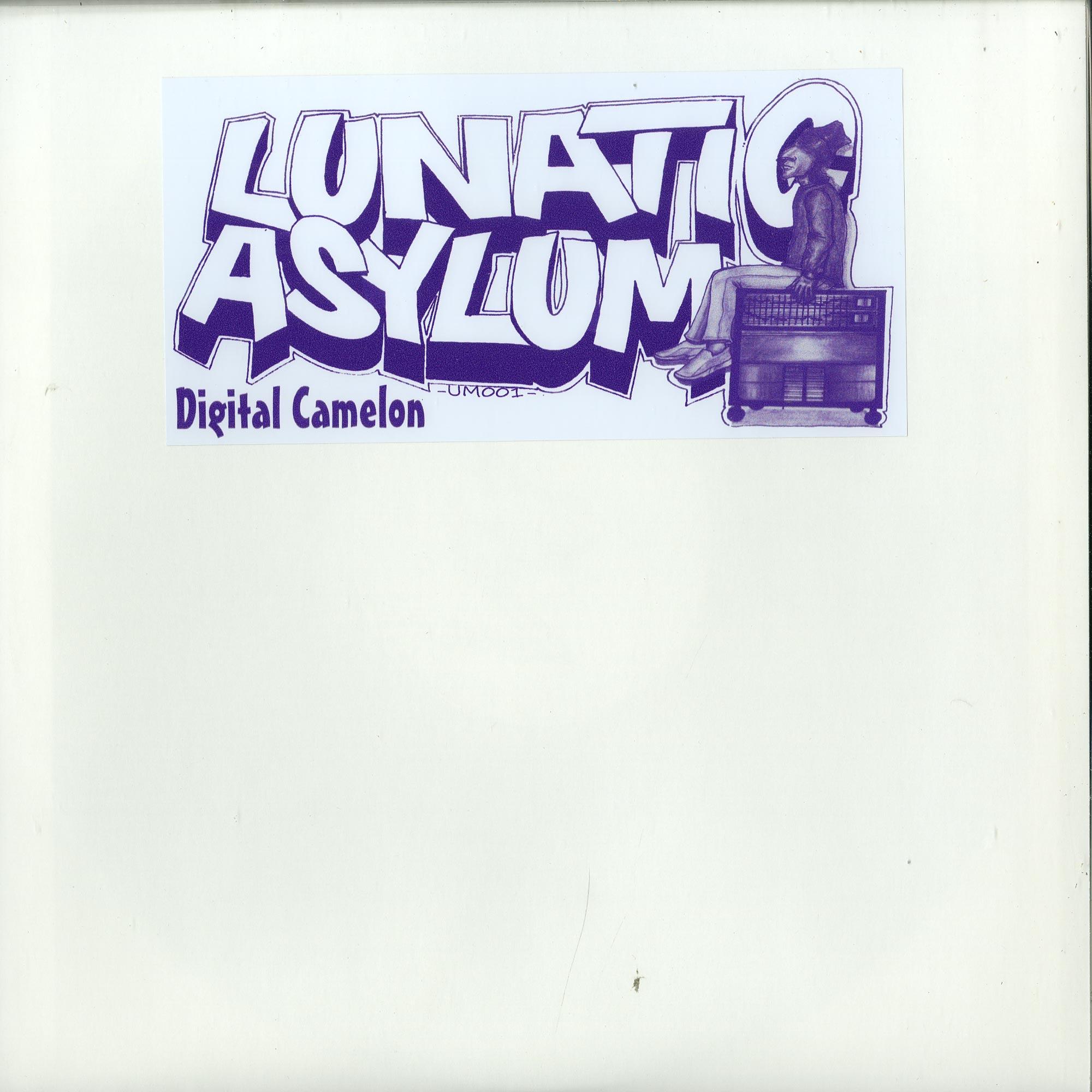 Lunatic Asylum - DIGITAL CAMELON
