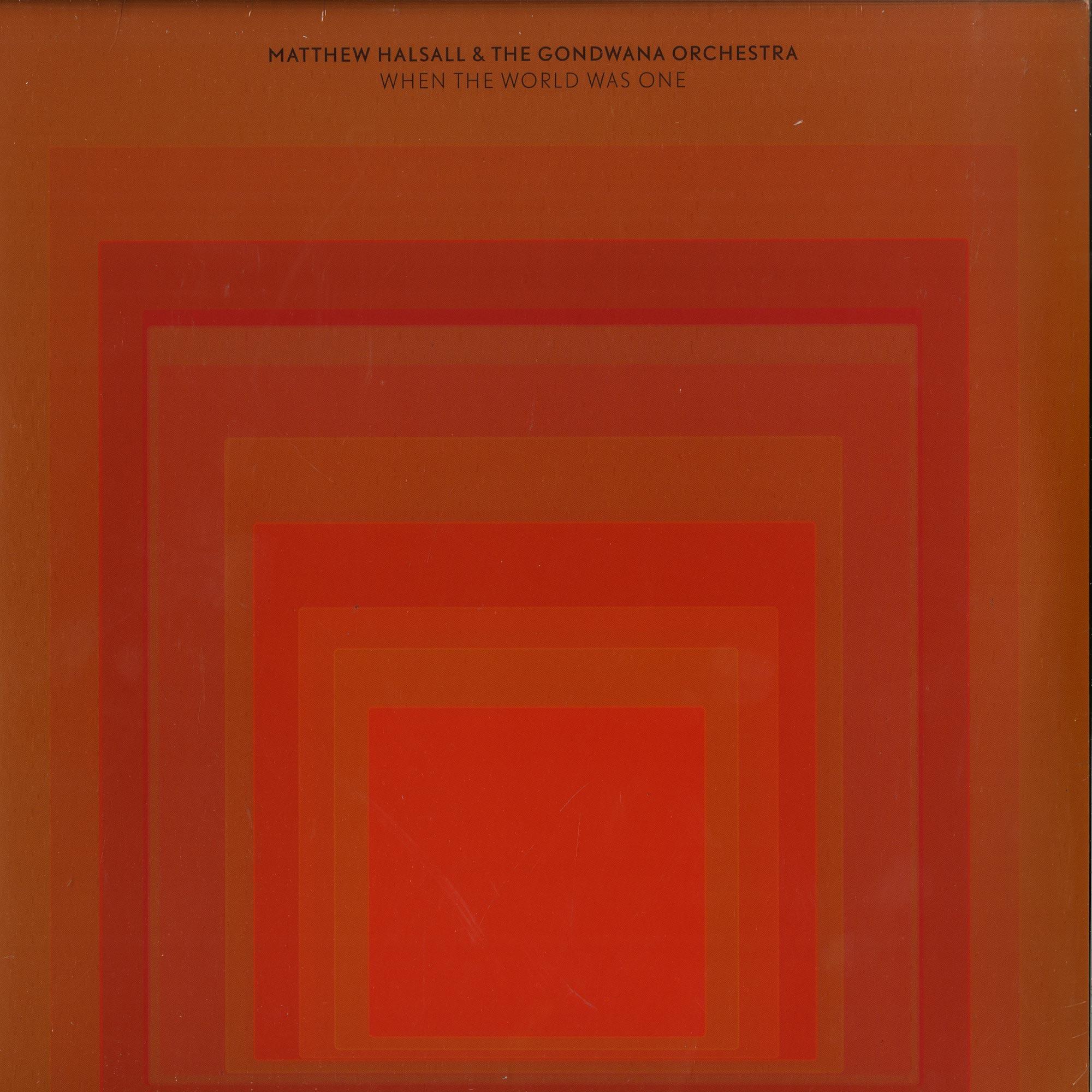 Matthew Halsall & The Gondwana Orchestra - WHEN THE WORLD WAS ONE
