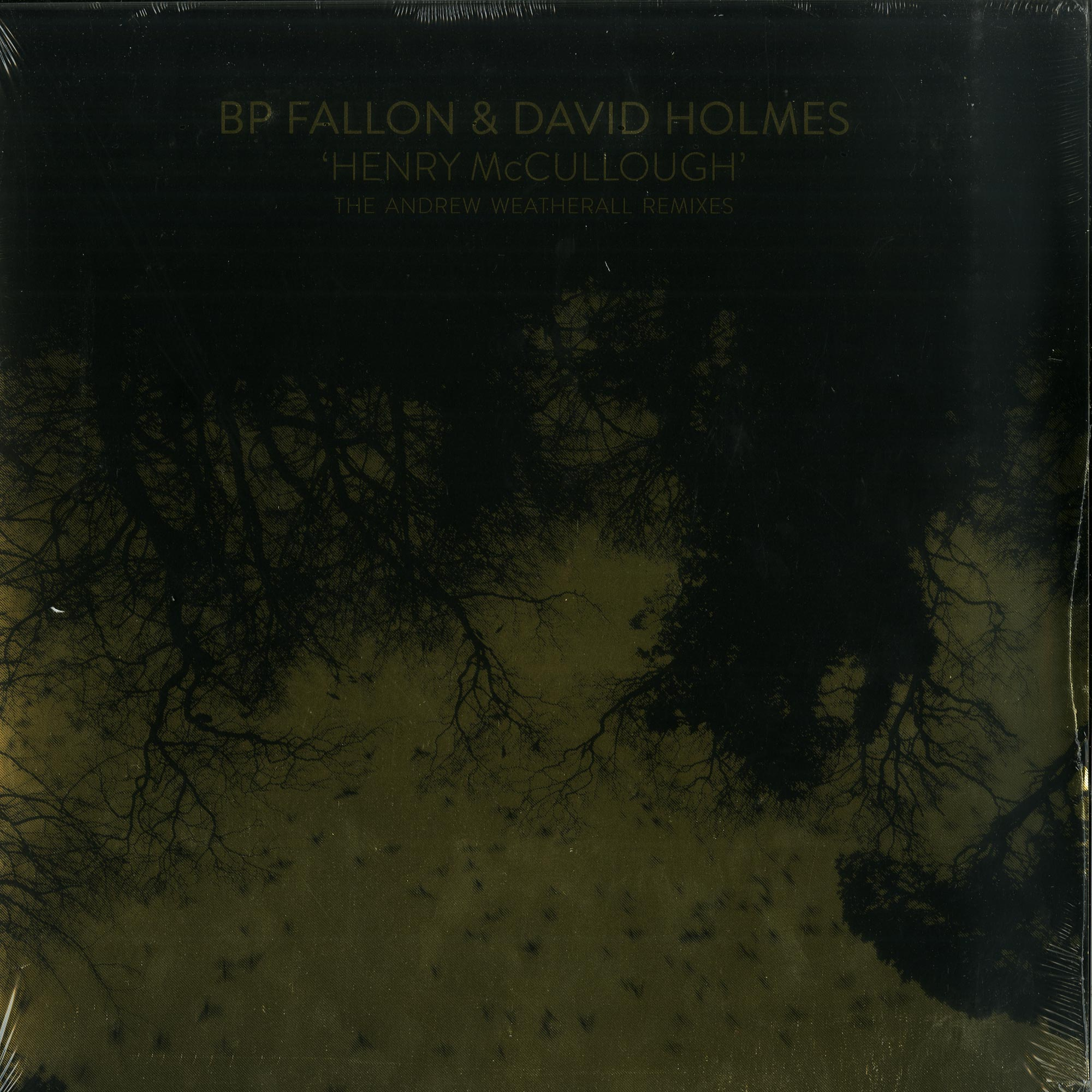 BP Fallon & David Holmes - HENRY MCCULLOUGH