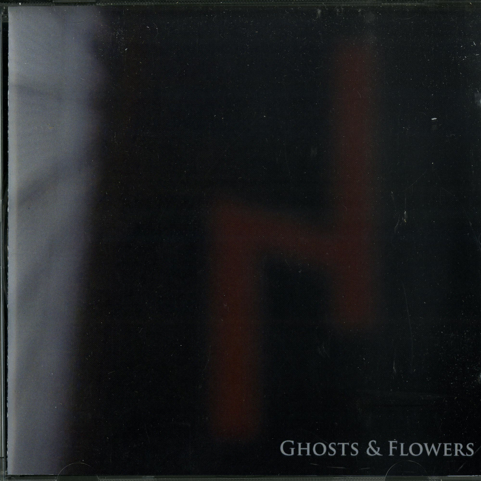 Niereich - GHOSTS & FLOWERS
