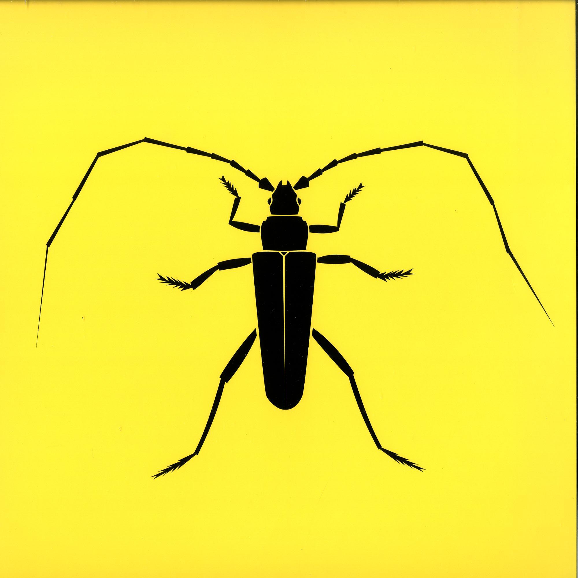 Acidupdub - LONGHORN BEETLE EP
