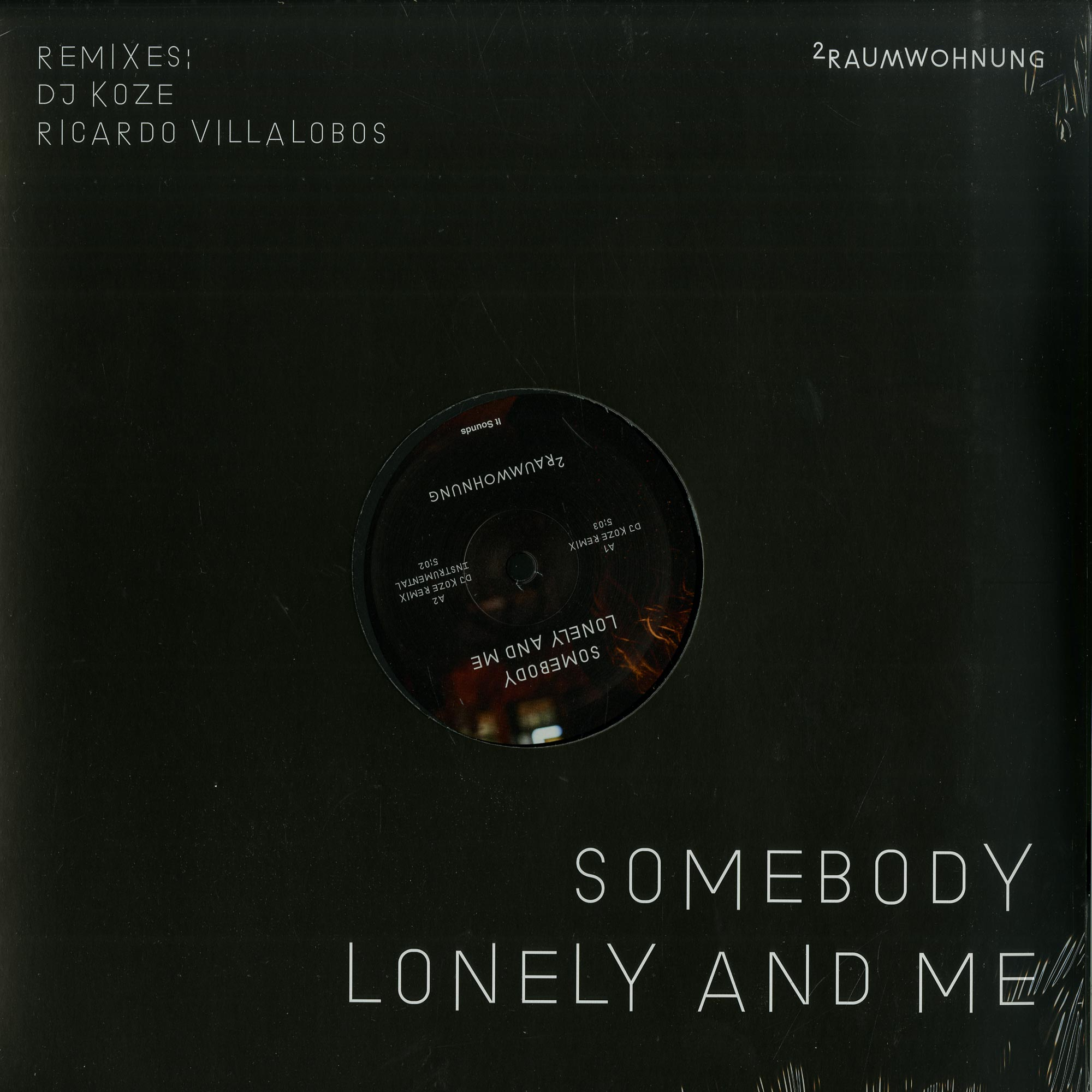 2Raumwohnung - SOMEBODY LONELY AND ME