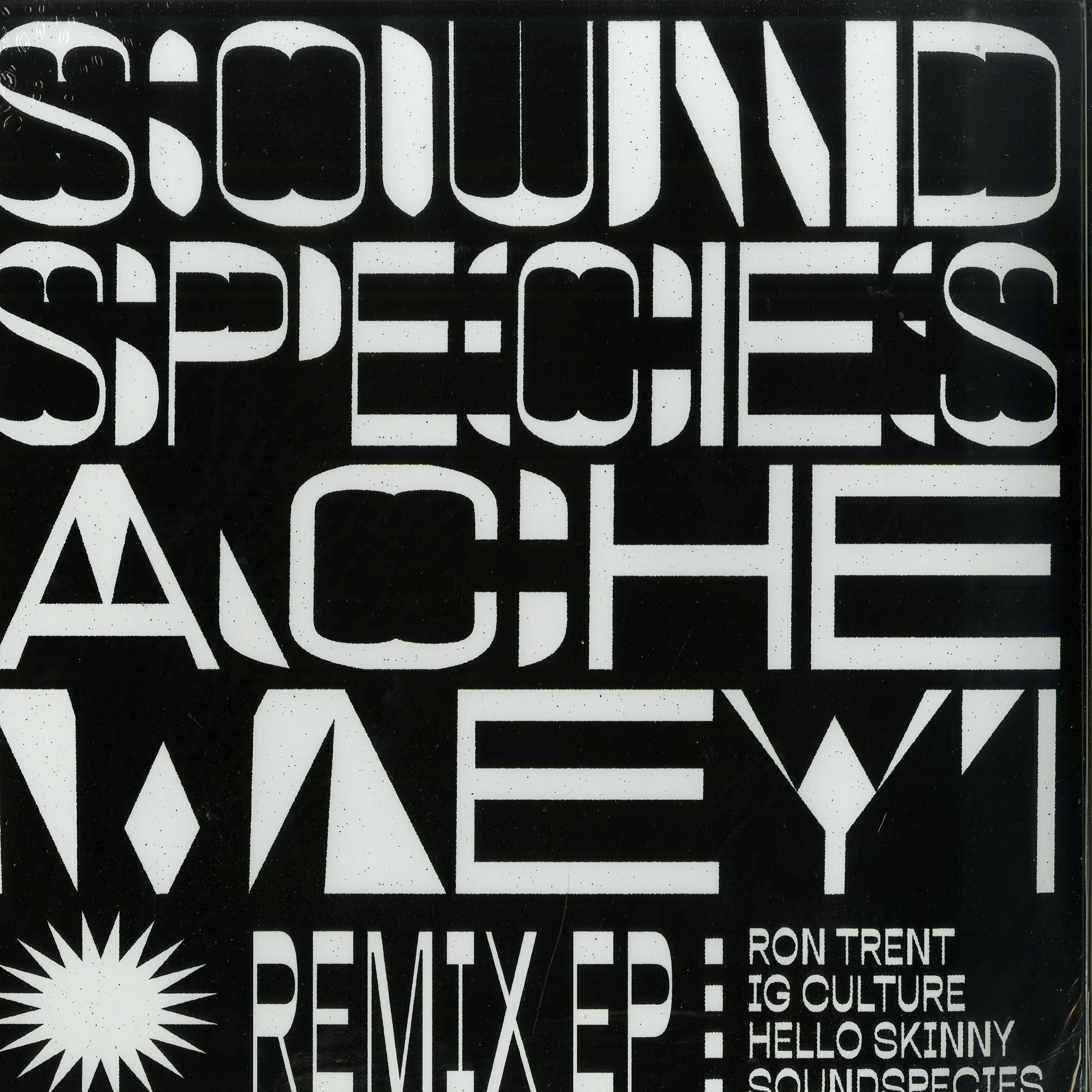 Sound Species & Ache Meyi - REMIX EP