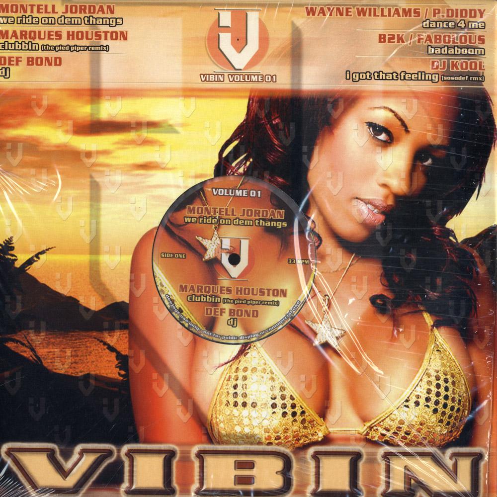 V/A - VIBIN VOLUME 01