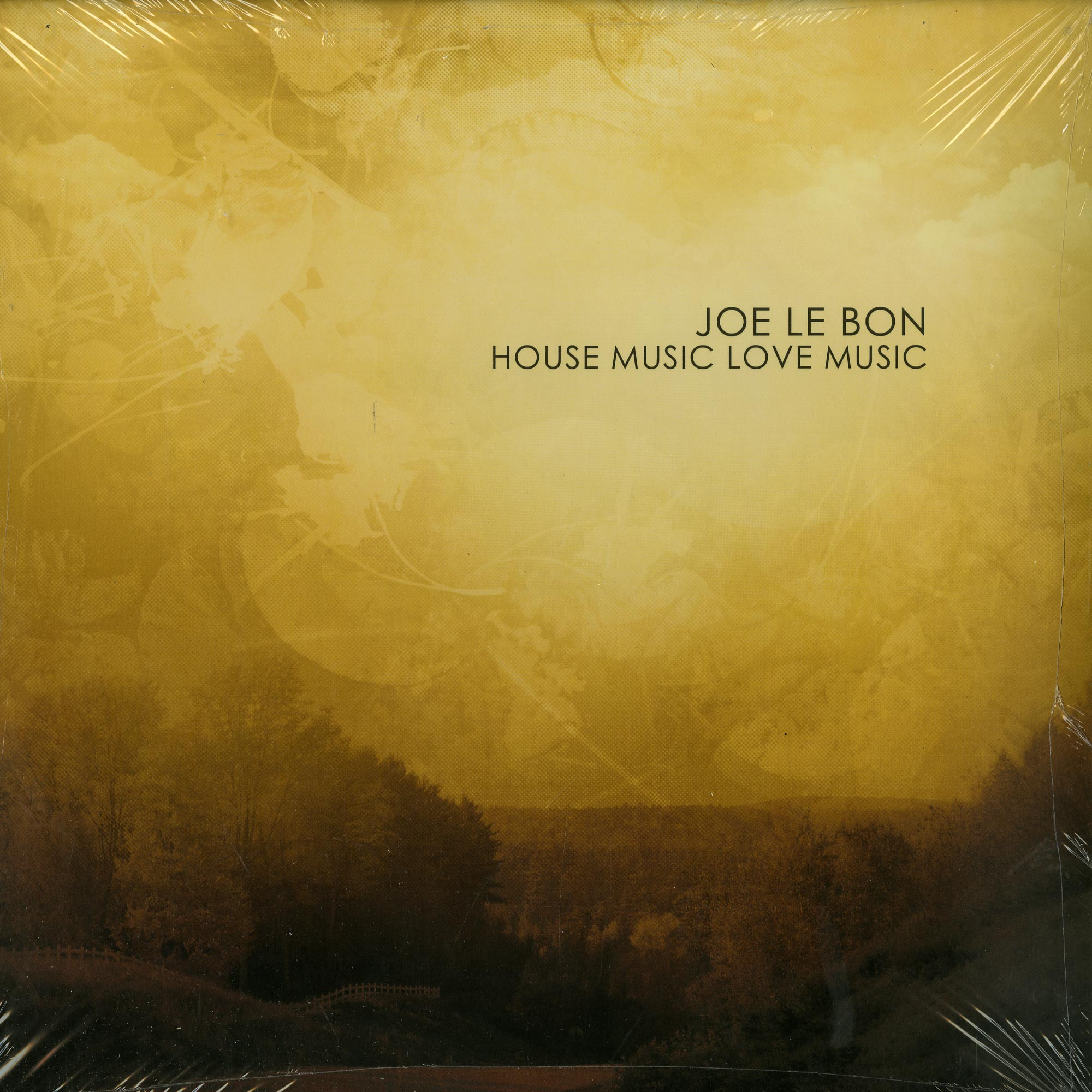 Joe le bon house music love music vinyl shop for House music vinyl