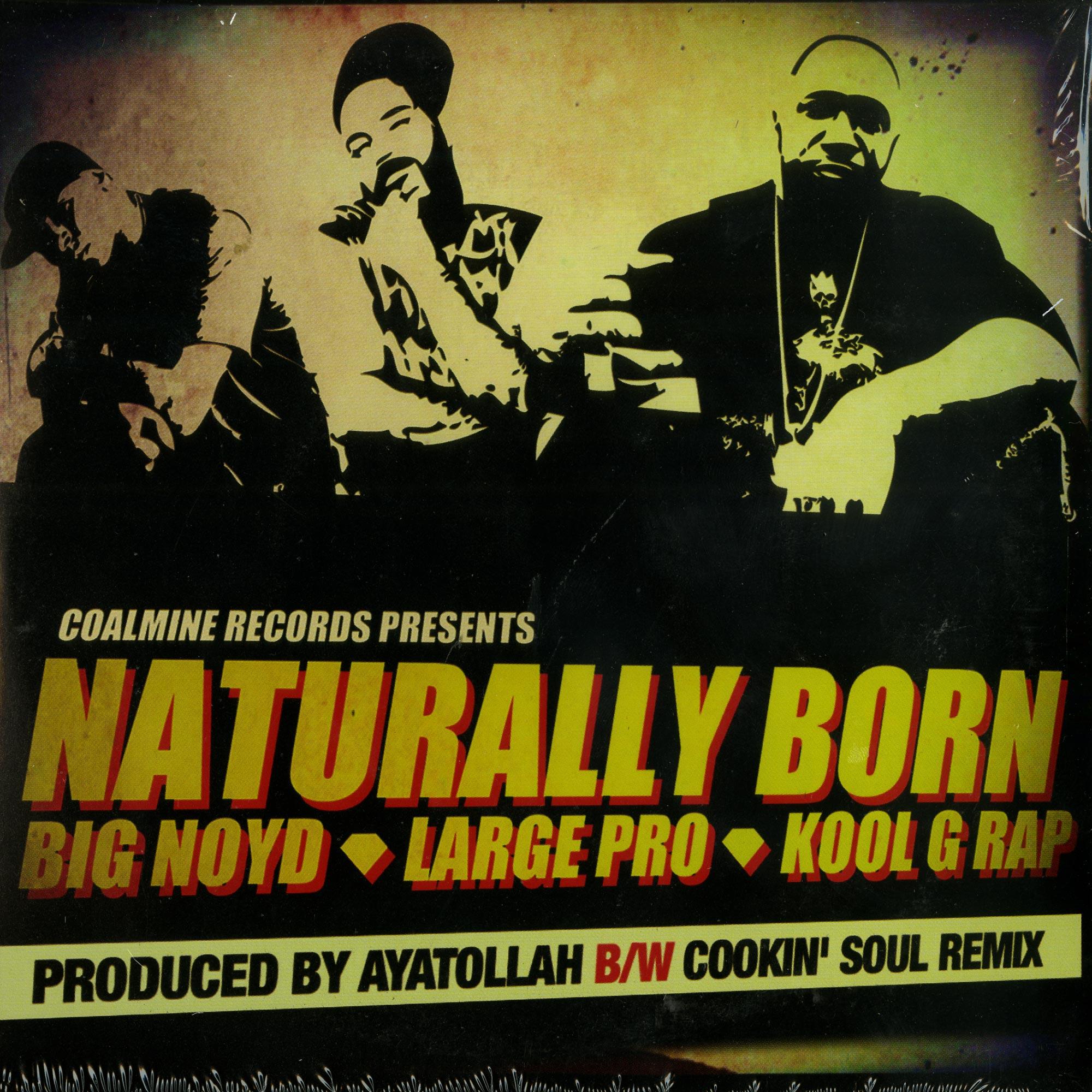 Big Noyd. Large Pro. Kool G Rap - NATURALLY BORN