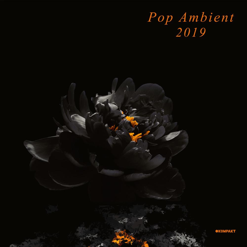 Various Artists - POP AMBIENT 2019